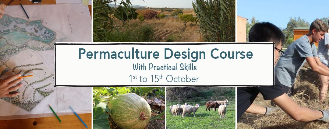 Permaculture Design Certificate Course (PDC) – 1 to 15 October